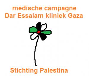 logo Dar Essalam kliniek